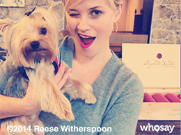 Reese Witherspoon winking with one eyed dog